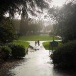 Ravenhill Park 🏴